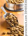 Dry kibble dog food in scoop. 30485636