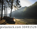 tent under the pine forest at morning. 30491526