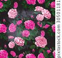 rose 30501181