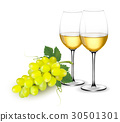 Green grapes and wine 30501301