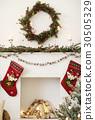 Christmas 30505329