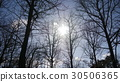 太陽系 太陽能 太陽 30506365