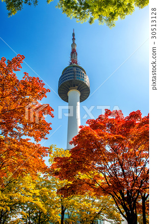 Seoul Tower and red autumn maple. 30513128