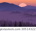 Purple valley with coniferous wood. 30514322