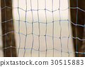 Handball net with two trunks of palm 30515883
