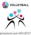 Volleyball 30518737