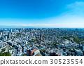 藍天的東京風景 30523554