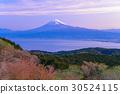 ภูเขาฟูจิ,ภูเขาไฟฟูจิ,ทัศนียภาพ 30524115
