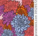 floral 30526572