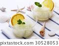 레몬 셔벗 30528053