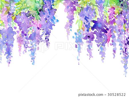 水彩畫 花香 紫藤 30528522