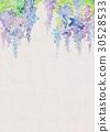 水彩画 花香 紫藤 30528533
