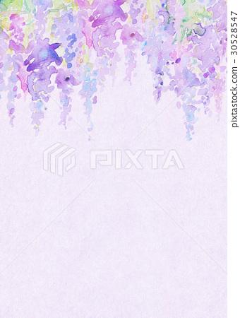 水彩紫藤花纹理 30528547