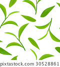 Green tea leaves and twigs, seamless pattern 30528861