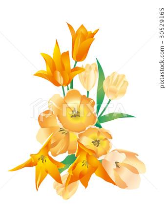 꽃 30529165