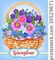 Springtime garden flowers in basket 30529671