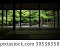 녹색, 잎, 교토시 30536358