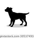 Dog pup pet black silhouette animal 30537493
