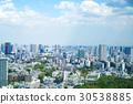tokyo, scene, scenery 30538885