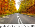 Road in the autumnal forest 30539089