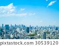 tokyo, scene, scenery 30539120