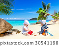 holidays, tropical, beach 30541198