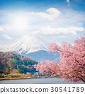ฟูจิ,ประเทศญี่ปุ่น,ญี่ปุ่น 30541789