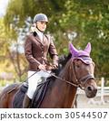 dressage, horse, rider 30544507