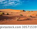 The scenic Sossusvlei and Deadvlei, Namibia 30571539