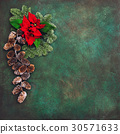 Pine branches red flowers poinsettia Christmas  30571633
