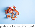 Wooden colorful pencil sawdust and shavings on 30573769