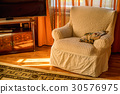 Comfortable armchair in living room 30576975