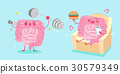 intestine with health concept 30579349