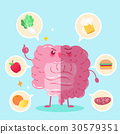 intestine with health concept 30579351