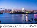 Tokyo Bay and Rainbow Bridge  30584528