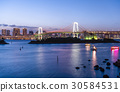 Tokyo Bay and Rainbow Bridge  30584531