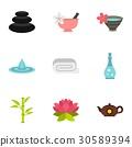 icon, vector, set 30589394