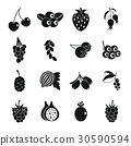Berries icons set, simple style 30590594