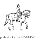 Equestrian horse - vector illustration  30594457