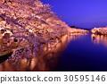 히로사키 공원의 라이트 업 30595146