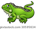 Iguana Lizard Cartoon Character 30595634