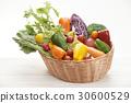 다채로운 야채 세트 30600529