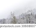 Neuschwanstein Castle in winter landscape. 30608607