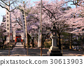temple, temples, grounds 30613903