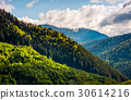 forest, mountain, coniferous 30614216