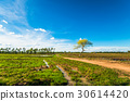 background, countryside, field 30614420