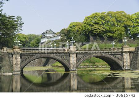 Tokyo Imperial Palace Nihonbashi Fresh Green in Spring 30615742