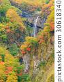 니가타 묘코 _ 단풍 惣滝 30618340