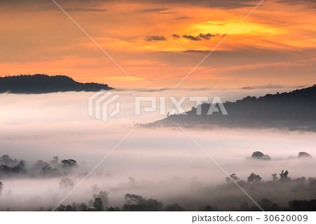 Under mountain fog in the morning. 30620009