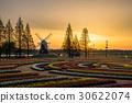 akebono mountain farm park, tulip field, wind mill 30622074